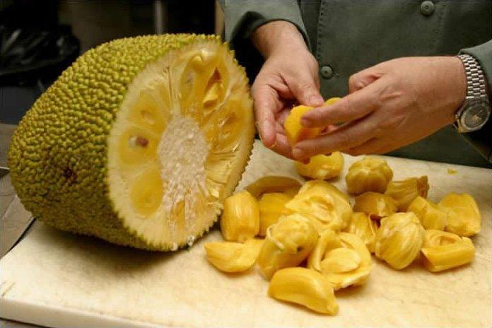 Kết quả hình ảnh cho Jackfruit