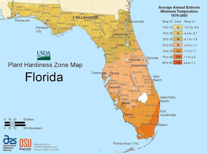 florida plant hardiness zone map fig 4 average temperatures in florida